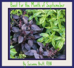 basil for sept