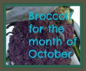 broccoli for ot
