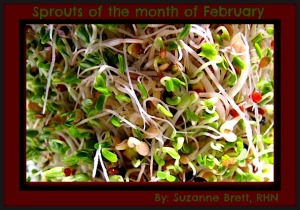 sprouts for Feb