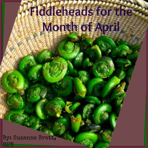 fiddleheads for the month of April-complete