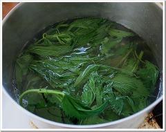 boiling nettles
